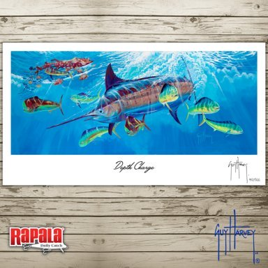 RAPALA 11-4 SECOND PLACE FINAL (1)